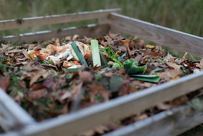 compost ingredienti