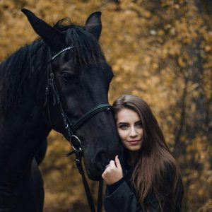 come comprare un cavallo