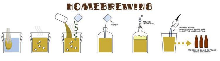 home brewing processo