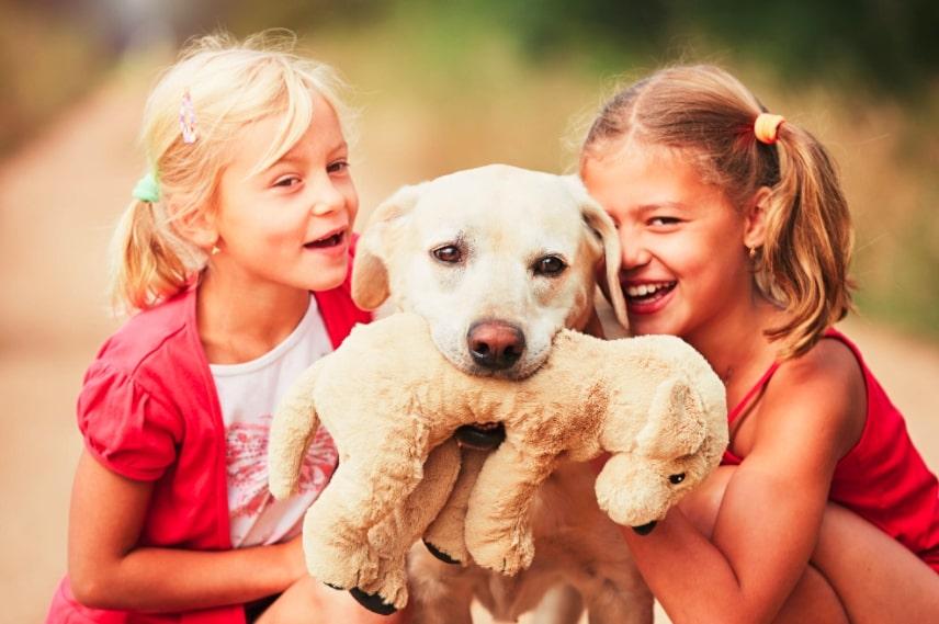 educazione cane bambini