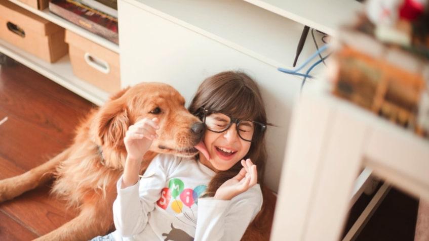 intelligenza cane bambini