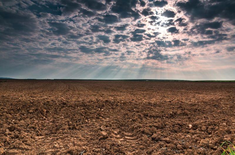 aumentare alcalinita terreno