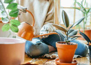 donna versa acqua in vaso