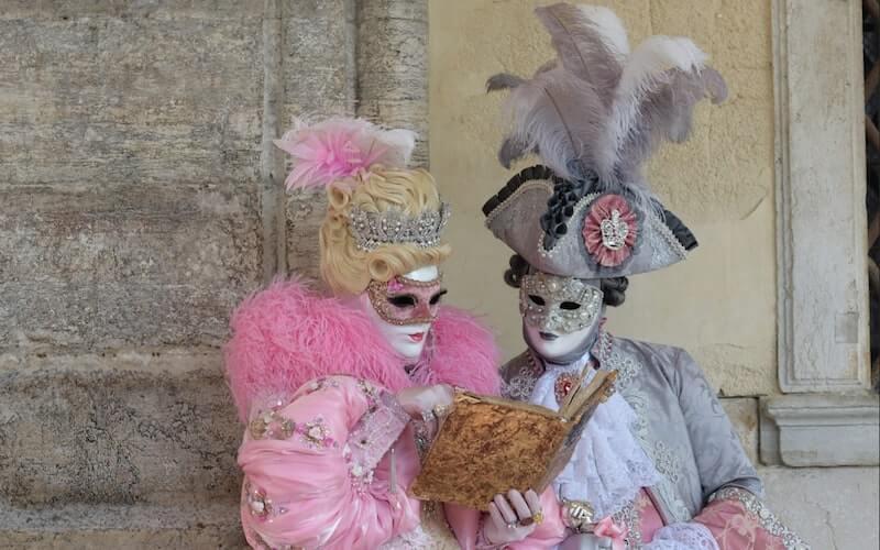 Maschere di carnevale rosa e grigio