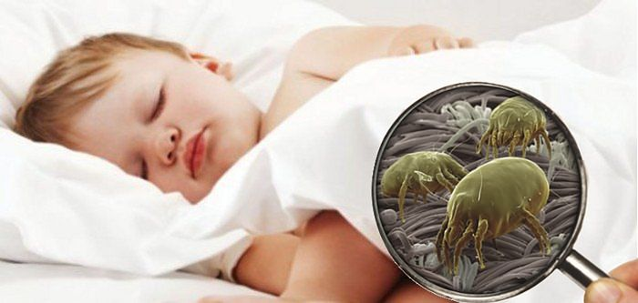 bambino dorme ed acari