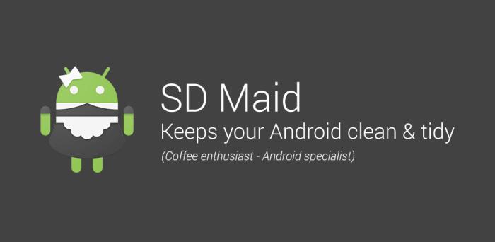 sd maid app