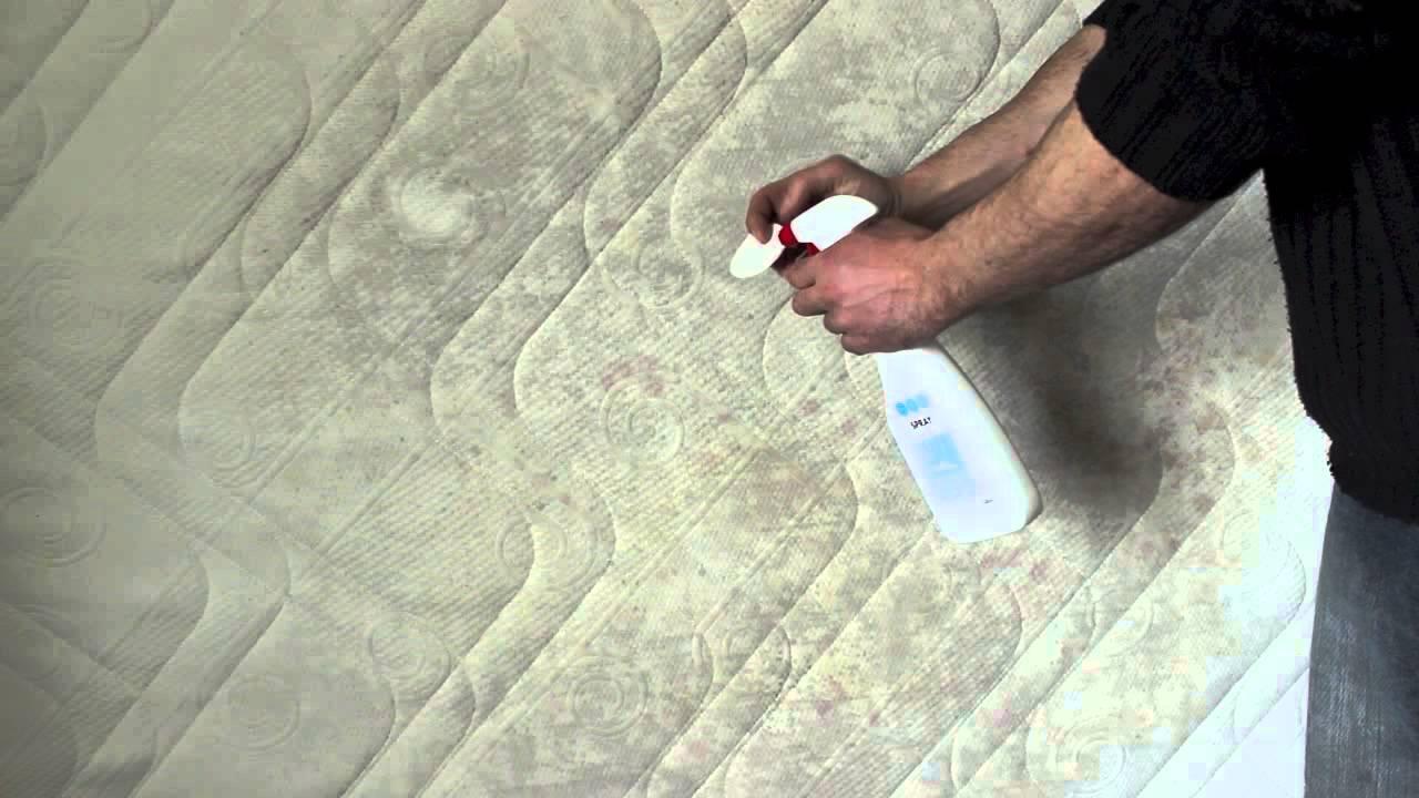 come togliere pipi materasso