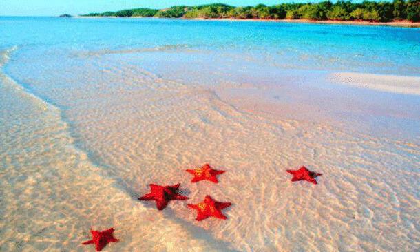 paesaggio e spiaggia