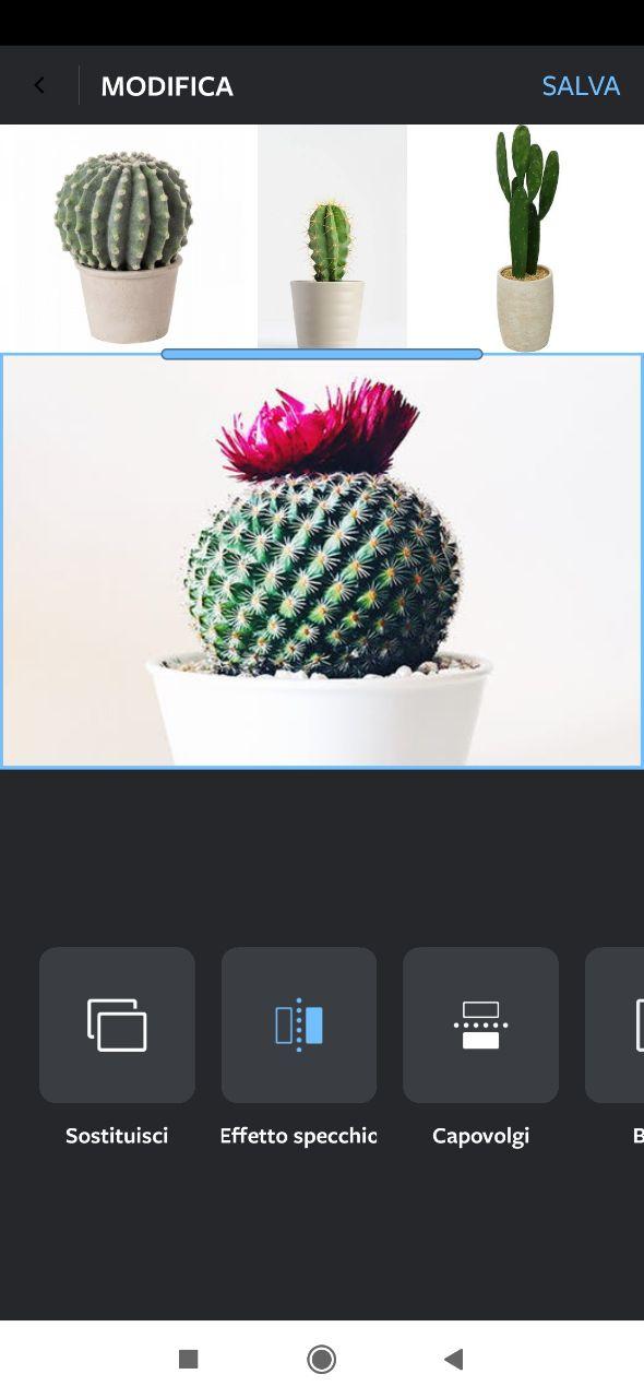 Effetto specchio instagram layout