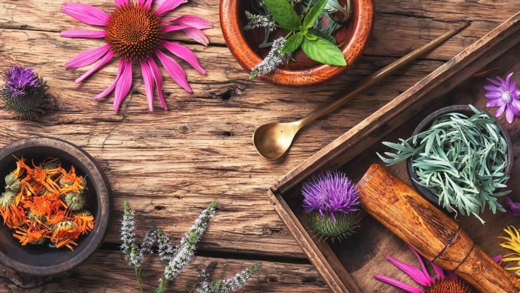 Come fare i fiori secchi?