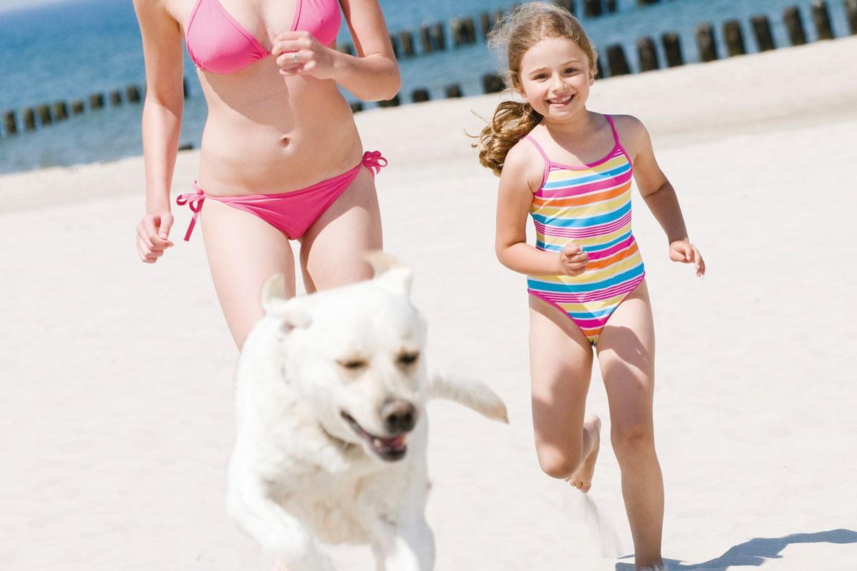 dog beach alassio