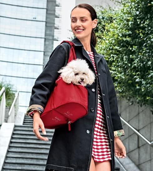 Borsa trasportino per cani United Pets